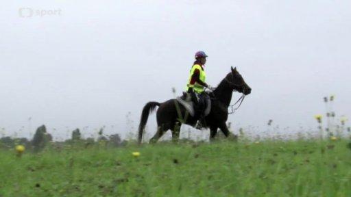 Jezdectví: M ČR v jezdecké vytrvalosti mladých jezdců 2014