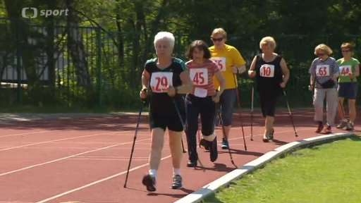 Sportovní hry seniorů 2014