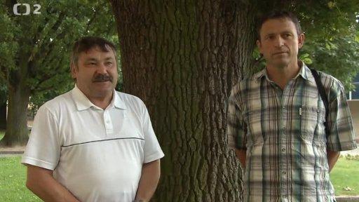 Nedej se!: Stromy a my – o lásce a zlobě