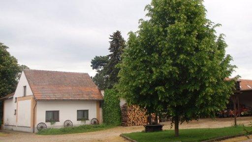 Proměny českého venkova