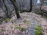 N�vraty k divo�in� – N�rodn� park Podyj�