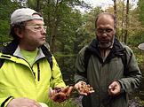Na houby Nejen o v�clavk�ch