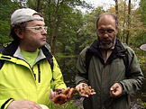 Na houby Nejen o václavkách