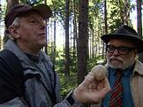 Na houby Li�ky, ku��tka a b�ichatky
