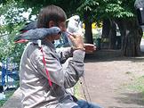 Ptačí výlet