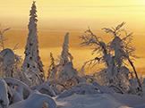 Zmrzl� planeta � Zemsk� p�ly