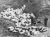 Masakr v Babím Jaru