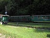 Divočina bez hranic Bieszczadzki Park Narodowy