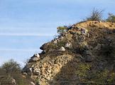 Divočina bez hranic Duna - Ipoly Nemzeti Park