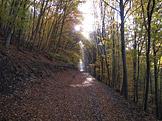 Duna - Ipoly Nemzeti Park