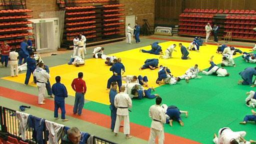 Festival bojových sportů a umění 2012