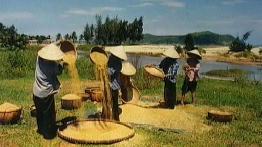 Cestománie: Vietnam - Barvy tropů