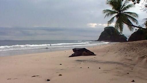 Cestománie: Kostarika - Švýcarsko Střední Ameriky