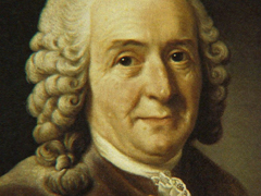 Profesor Carl von Linné