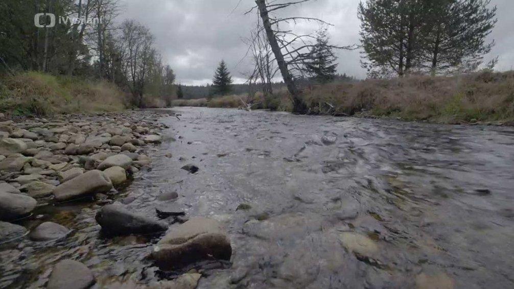 Minuty z přírody: Řeka Křemelná