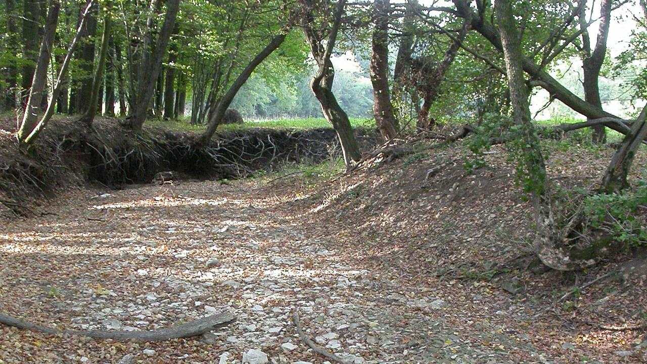 Cestou suchých potoků
