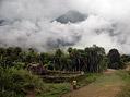 Na cest� po �dol� Baliem