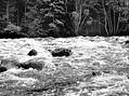 Povodeň ve svatém Prokopu v červenci 1954