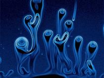 Transgenesis – Umělci v laboratořích