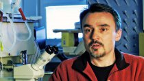 Kryobióza - skrytý život