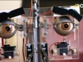 Roboty s emocemi