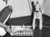 Kolébka a nafukovací koloušek - 1965