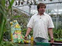 Vlastnoručně vypěstovaná rajčátka chutnají nejlépe