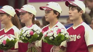 Fed Cup 2011
