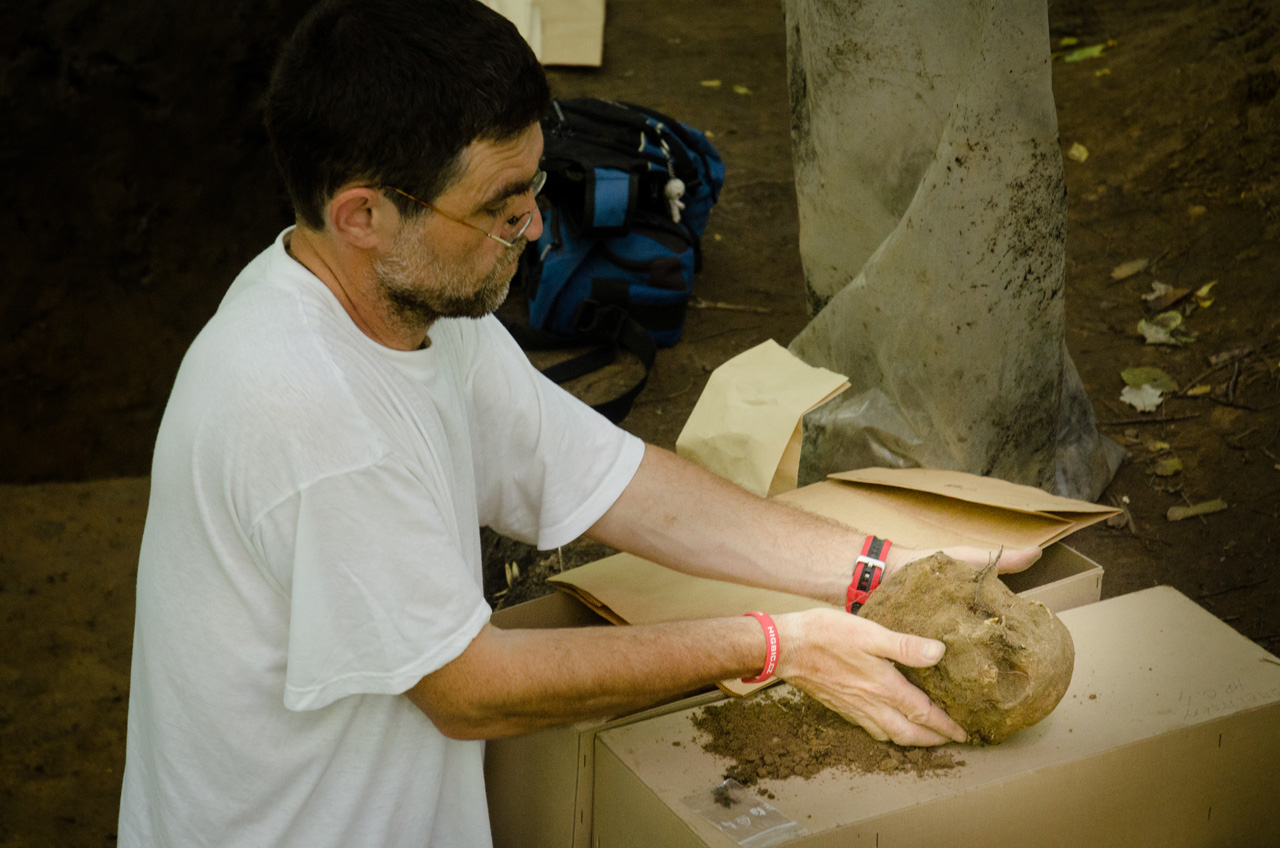 Datování nehtů archeologie